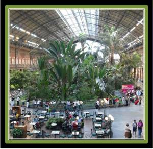 Atocha train station hosts a tropical greenhouse where you can enjoy a coffee after an exhausting visit to the Reina Sofia (photo from viaches.com)