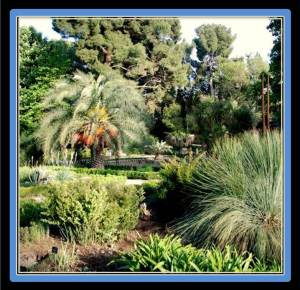The botanical gardens are a popular tourist attraction with hot weather, as people love to get some cool breeze in a privileged area in the very center of Madrid (photo gardenvisit.com)